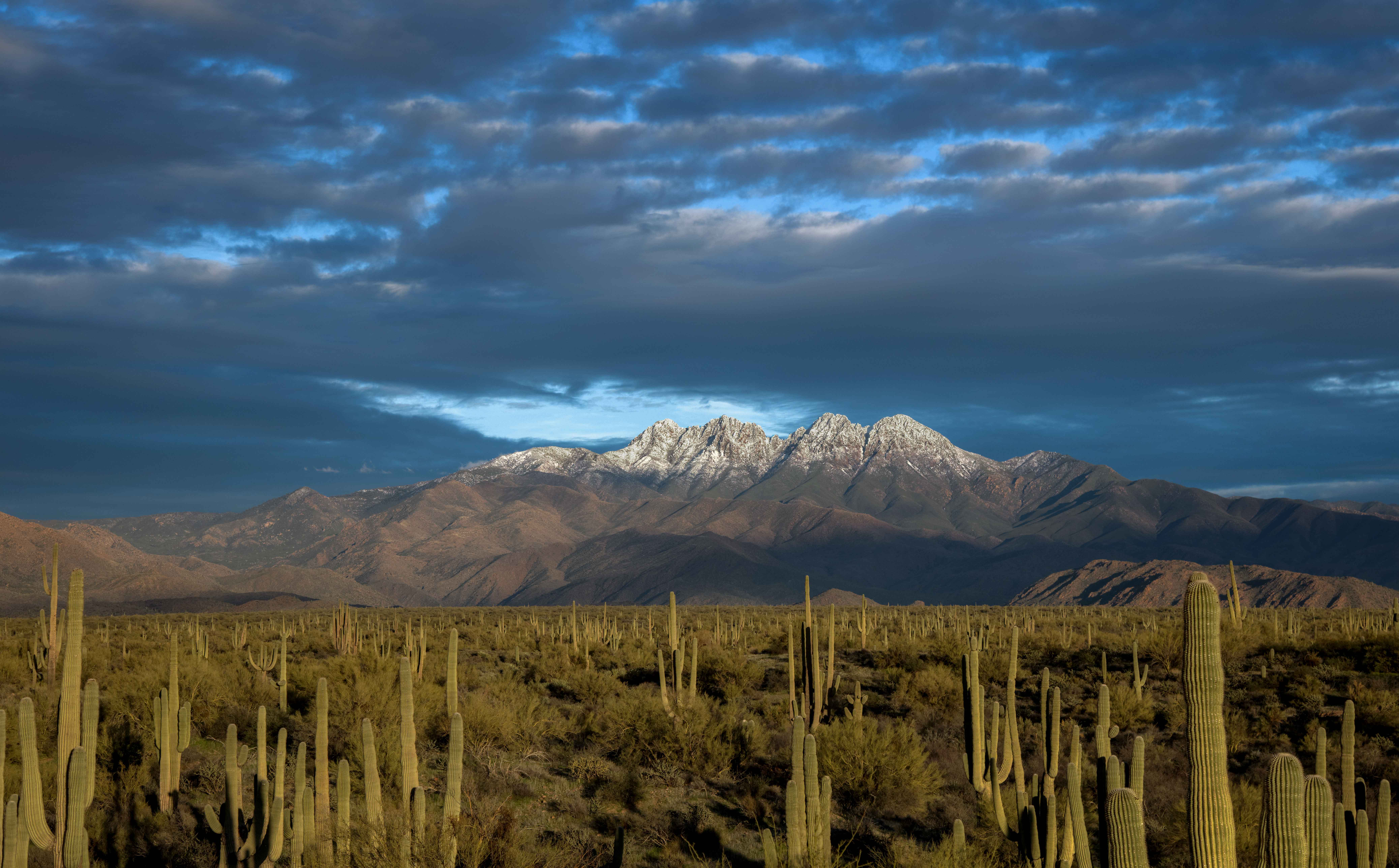 Snow-capped Four Peaks at Sunset